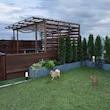 新事務所建物の屋上ドッグラン