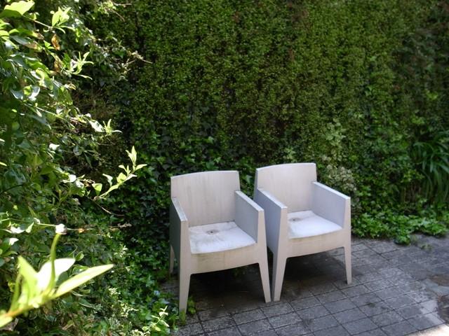 都心の潤い、緑のカーテンのあるお庭