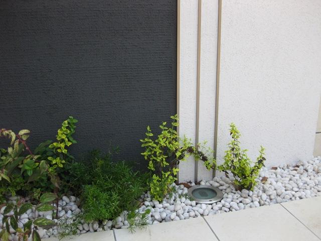 アルミのシルバー色や下草の緑はクッション材の役割
