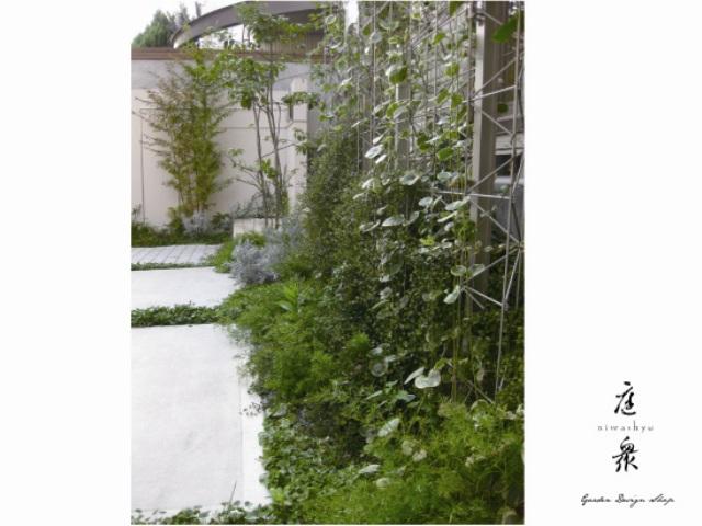 メッシュフェンスに緑のカーテン